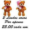 Urso ted kit com 2
