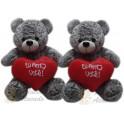 Urso Ted Kit com 2