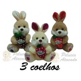 https://www.peluciaatacado.com.br/novo/1737-thickbox_default/coelho-com-cenoura-e-laco-kit-com-3.jpg