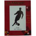 Flamengo porta retrato