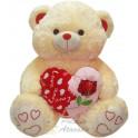 Urso coração apaixonado